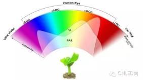 LED植物生长灯的波长及效果